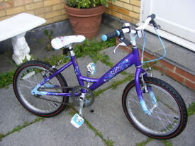 """RALEIGH GIRLS 18"""" WHEEL BIKE BEEN HARDLY USED IN GREAT WORKING ORDER AGE 5+"""