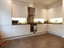 Stunning & large 2 double bed flat located within a 30 second walk Of Turnpike Lane station