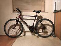 Raleigh Nitro 15-Speed Men's Bike