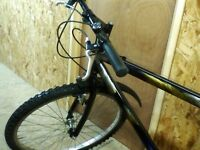 Lovely Raleigh Woman's Mountain Bike