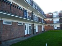 Self contained flats to let