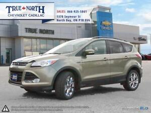 2013 Ford Escape SEL AWD - LEATHER INTERIOR / POWER LIFT GATE