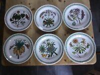 Portmeirion Botanic Garden Dinner Plates