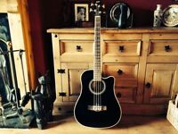 Ashton Electric acoustic bass guitar