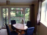 Modern 2 bedrooms flat for rent Western Road, Branksome Park