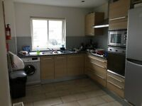Flat clearance - three beds, two sofas and all kitchen appliances