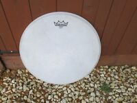 "Drums - 16"" Drum heads - Remo Evans - 2 available"