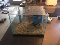 15 Litre fish tank including all accessories