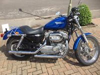 Beautiful Blue Harley-Davidson XLH 883