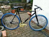 VIKING FIXIE