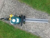 B&Q PETROL HEDGE CUTTER SPARES N REPAIR