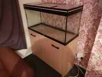 Large Fish Tank with Stand Immaculate Condition