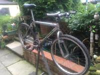 Townsend Mans mountain bike needs recommissioning