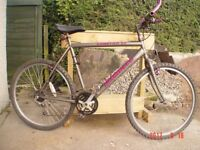Gents/youth Bike Good condition.