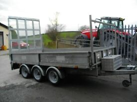 Dale Kane 12ft Tri Axle Trailer with 6ft door
