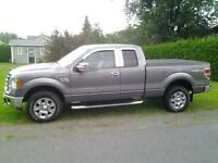 2009 Ford F-150 Beige Camionnette