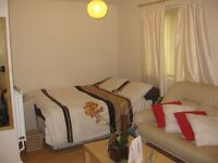 Large Double Room in houseshare, Tulse Hill, SW2, near Brixton