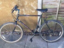 Raleigh Mohawk mountain bike for sale