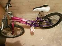 Raleigh child bike
