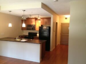 Bachelor Condo for Rent - The Vistas, Eagle Ridge