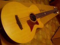 electro acoustic bass