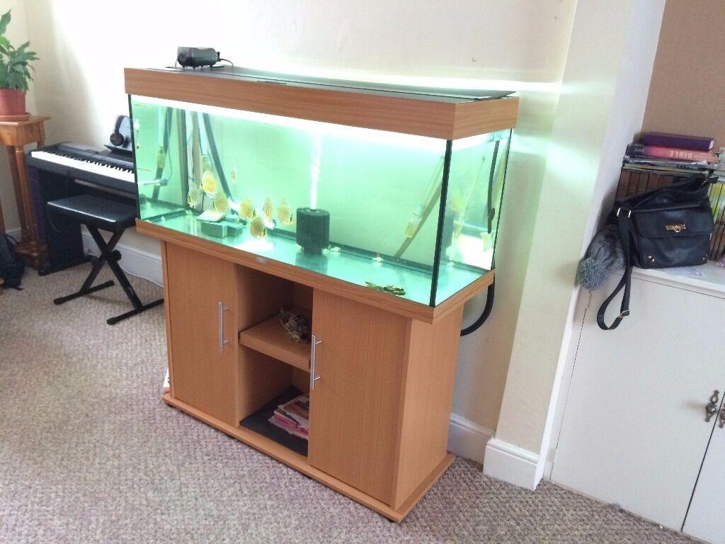 Juwel rio 240 aquarium fish tank - Juwel Rio 240 Fish Tank
