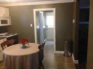 10 A Lancaster St Mount Pearl-Cozy Furnished One Bed Avail Now