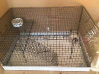 Standard rat and cage