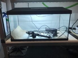 60 litre tank with light, filter and heater