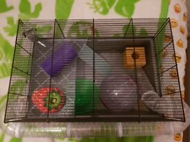 Hamster cage with hamster toys