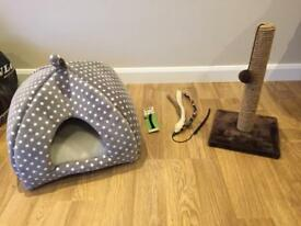 Kitten starter home and scratch post