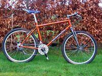 Wanted 1990s Kona Mountain Bike