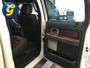 2010 Ford F-150 PLATINUM*SUPERCREW*NAVIGATION*SUNROOF*LEATHER*BA Kitchener / Waterloo Kitchener Area image 15