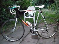 Raleigh Pro-Race 12speed Handbuilt Road Bike XL63cm Reynolds 501 Liteweight Steel Exage Index Gears
