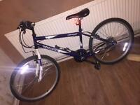 Dunlop Mountain Bike 22 inches good condition