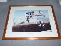 Race Horse Picture - Desert Orchid