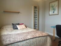 Spacious attractive double room only 5 minutes from Lancaster University. £110 per week