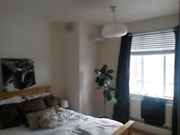 Clapton : 2 Double rooms in modern, bright and confortable flat £730 - £770/m (excl. bills)