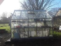 Greenhouse 10x8