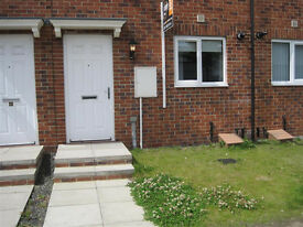 Modern 2 bed home in Braidwood Mews, central Stanley (2 bed)