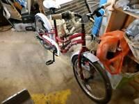 Apollo ivory kids bicycle