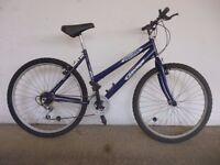Savage Stealth Mountain bike (frame size 52 cm)