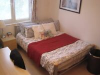 Spacious double room in lovely shared flat in Redland