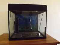 Lido Fish tank for sale