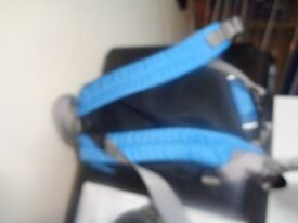 LittleLife Runabout Toddler Backpack - Blue. Excellent condition. With parent handle strap