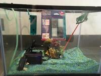 24L Fish Tank with lid, filter, gravel & tank ornament