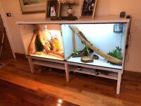 Reptile aquarium and accessories