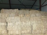 Hay For Sale, Ideal For Horses, Livestock, And Rabbits