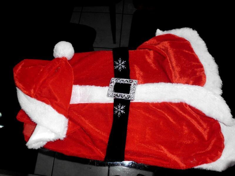 hunde weihnachts kost m ca 40 cm lang in niedersachsen schortens hundezubeh r gebraucht. Black Bedroom Furniture Sets. Home Design Ideas