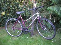 ladies raleigh pioneer hybrid 20 in frame,runs well
